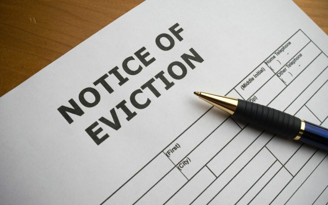 The Effect of the Eviction Ban on Mom-and-Pop Landlords in Chicago, IL